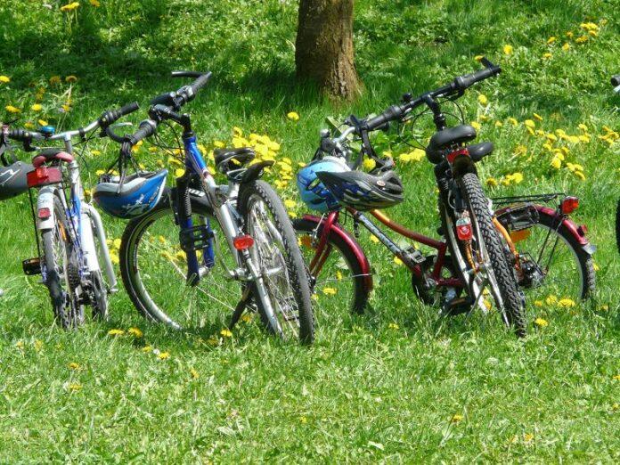 Fahrräder im Grünen