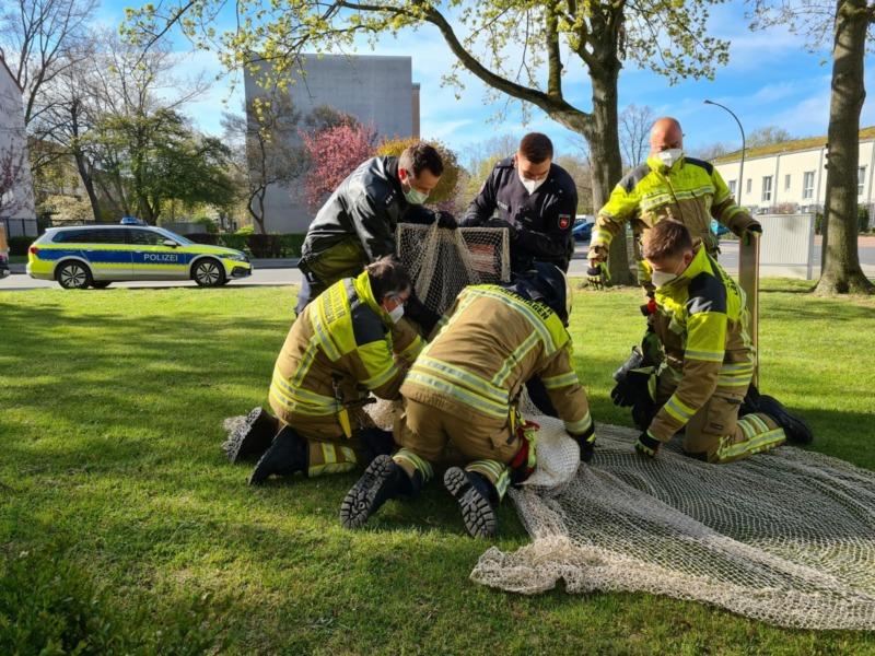 Feuerwehreinsatz Schwan
