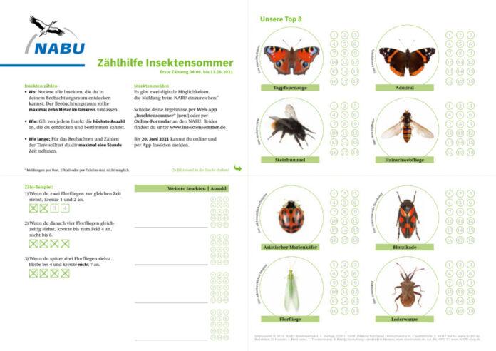 Insektensommer